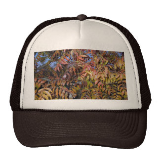 Colorful Autumn Leaves, Pinnate Trucker Hats