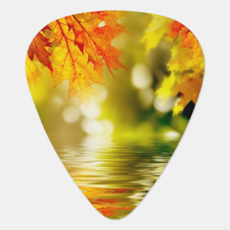 Colorful autumn leaves reflecting in the water 2 guitar pick
