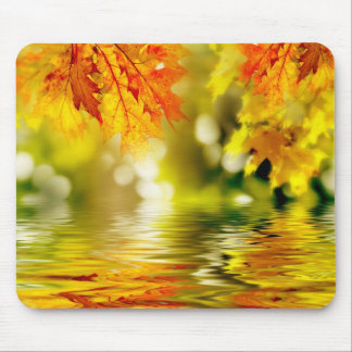 Colorful autumn leaves reflecting in the water 2 mouse pad