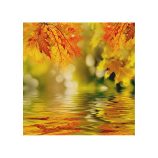Colorful autumn leaves reflecting in the water 2 wood print