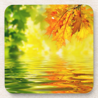 Colorful autumn leaves reflecting in the water coaster