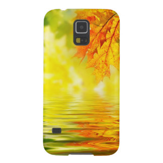 Colorful autumn leaves reflecting in the water galaxy s5 cases