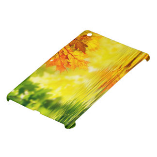 Colorful autumn leaves reflecting in the water iPad mini case