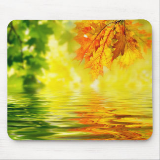 Colorful autumn leaves reflecting in the water mouse pad