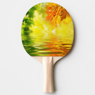 Colorful autumn leaves reflecting in the water ping pong paddle