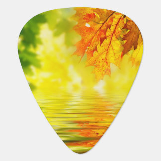 Colorful autumn leaves reflecting in the water plectrum