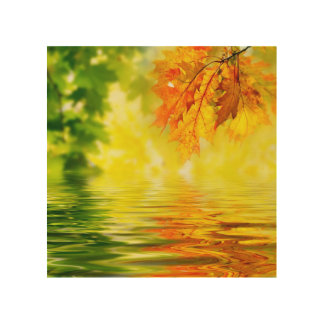 Colorful autumn leaves reflecting in the water wood wall decor