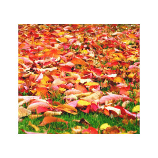 Colorful autumn leaves Wrapped canvas Canvas Print