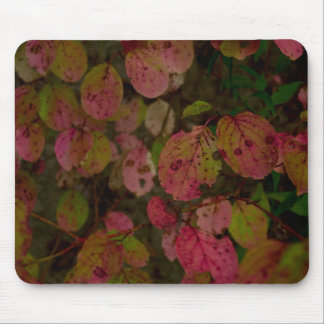 Colorful Autumn Mouse Pad