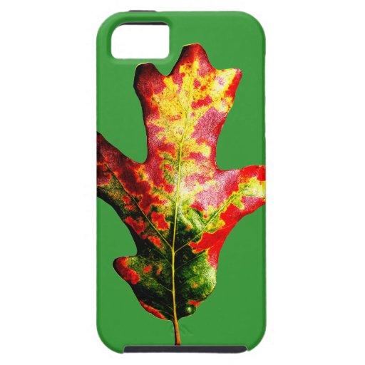 Colorful Autumn Oak Leaf iPhone 5 Covers