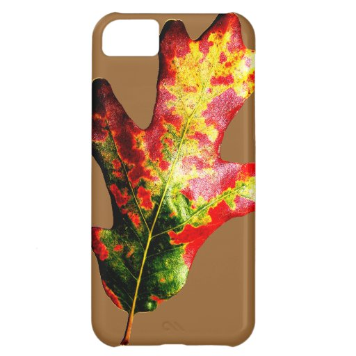 Colorful Autumn Oak Leaf iPhone 5C Cases