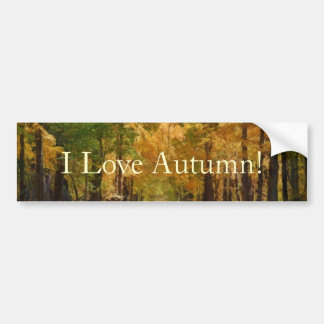 Colorful Autumn Stroll thought the Trees Car Bumper Sticker