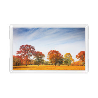 Colorful Autumn Trees Landscape Fall Season Acrylic Tray