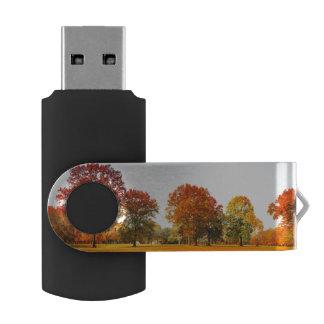 Colorful Autumn Trees Landscape Fall Season Swivel USB 2.0 Flash Drive
