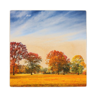 Colorful Autumn Trees Landscape Fall Season Wood Coaster