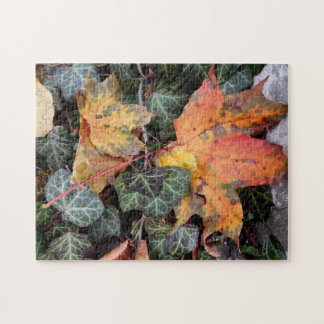 Colorful Autumnal Leaves Jigsaw Puzzle
