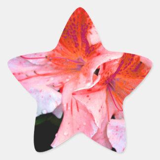 Colorful Azalea Flower Sticker