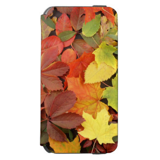 Colorful Background Of Fallen Autumn Leaves Incipio Watson™ iPhone 6 Wallet Case