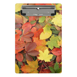 Colorful Background Of Fallen Autumn Leaves Mini Clipboard