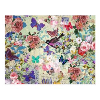Colorful bird butterflies vintage floral pattern postcard