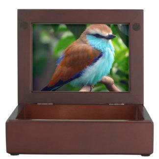 Colorful Bird Keepsake Box