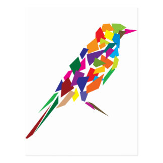 Colorful Bird Postcard