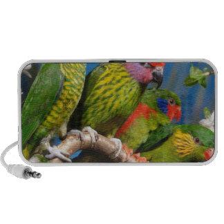 Colorful Birds Laptop Speaker