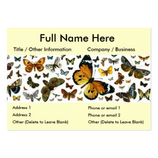 Colorful Butterflies Antiquarian Image Bookmark Pack Of Chubby Business Cards
