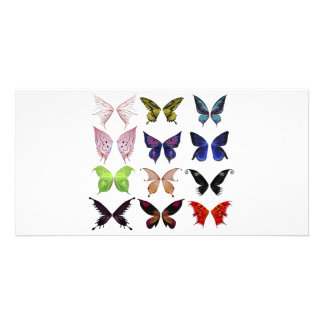 Colorful butterflies custom photo card