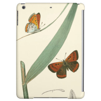 Colorful Butterflies Fluttering Around a Leaf iPad Air Cover