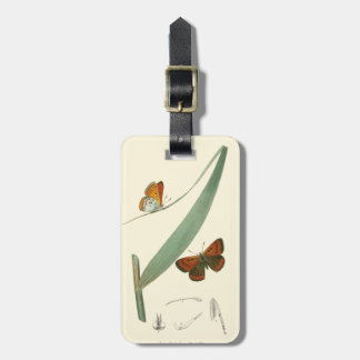 Colorful Butterflies Fluttering Around a Leaf Luggage Tag
