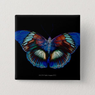 Colorful Butterfly design against black backdrop 15 Cm Square Badge