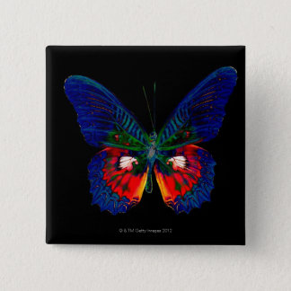 Colorful Butterfly design against black backdrop 2 15 Cm Square Badge