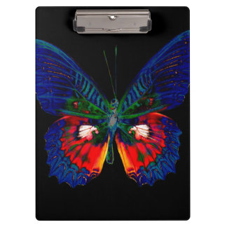 Colorful Butterfly design against black backdrop 2 Clipboard