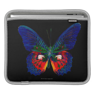 Colorful Butterfly design against black backdrop 2 iPad Sleeve