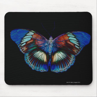 Colorful Butterfly design against black backdrop 2 Mouse Mat