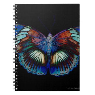 Colorful Butterfly design against black backdrop 2 Spiral Notebook