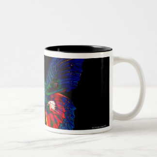 Colorful Butterfly design against black backdrop 2 Two-Tone Coffee Mug