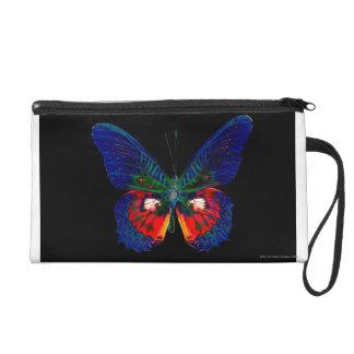 Colorful Butterfly design against black backdrop 2 Wristlet