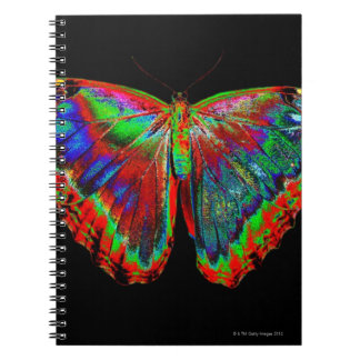 Colorful Butterfly design against black backdrop 3 Notebook
