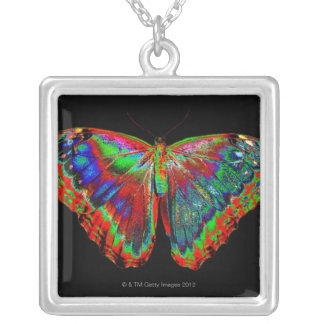 Colorful Butterfly design against black backdrop 3 Silver Plated Necklace