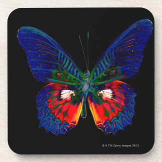 Colorful Butterfly design against black backdrop Beverage Coasters