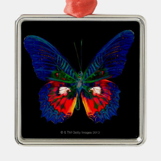 Colorful Butterfly design against black backdrop Christmas Ornament