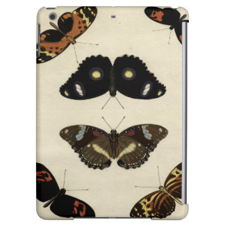 Colorful Butterfly Medley on Cream Background