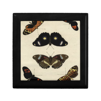 Colorful Butterfly Medley on Cream Background Gift Boxes