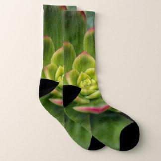 Colorful Cactus Close Up Photo Socks 1