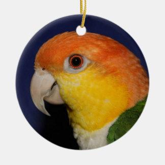 Colorful Caique Parrot Round Ceramic Decoration