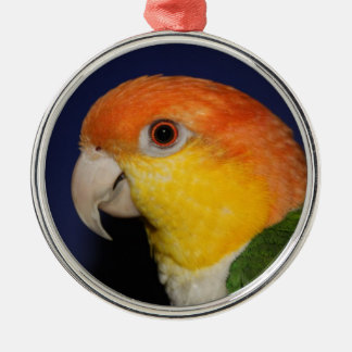 Colorful Caique Parrot Silver-Colored Round Decoration