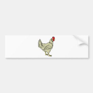 Colorful Cartoon Chicken (Rooster) Bumper Sticker
