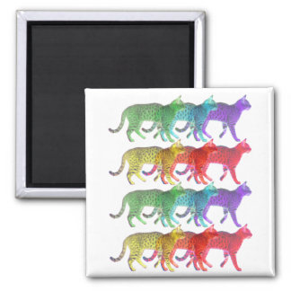 Colorful Cat Crowd Magnets